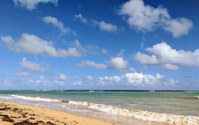 beach dreams No