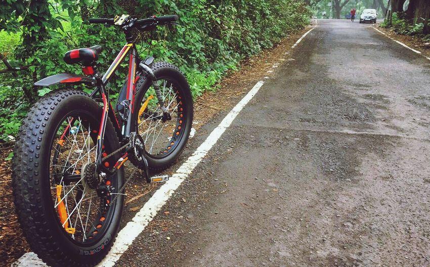 Fatbike Fatbikelove Fatbikeadventures Fatbikeworld Fatbikelife Fatbikes Nature Morningride Bicycle Bicyclelife Bicycleride