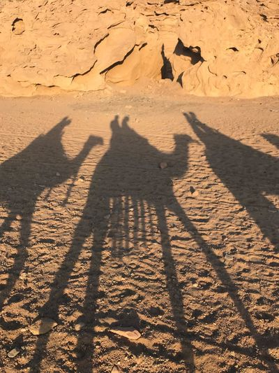 Desert Shadow Sunlight Nature Focus On Shadow Land Desert Sand Camel Leisure Activity Outdoors Unrecognizable Person Scenics - Nature Landscape Real People High Angle View Environment Long Shadow - Shadow The Great Outdoors - 2018 EyeEm Awards My Best Travel Photo