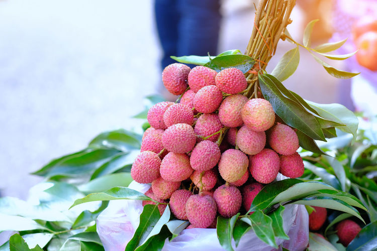 Fresh lychee in basket for sell in market, lychee Mae Klong ,Amphawa ,unique flavor ,Thailand Berry Fruit Close-up Day Focus On Foreground Food Food And Drink Freshness Fruit Growth Healthy Eating Leaf Lychee Nature No People Outdoors Pink Color Plant Plant Part Red Ripe Wellbeing