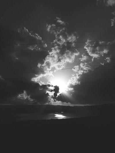 Bird Cloud -