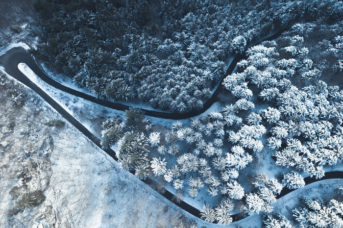 Getting up early, going out, breathing fresh winter air. It's all worth it! Aerial Shot Drohnenbild From Above  Ice Luftbild Road Schnee Schwarzwald Winter Aerial View Black Forest Blau Blue Cold Drohne Eingeschneit Forest Kalt Luftaufnahme Sky Snow Snowed In Street Von Oben Wald