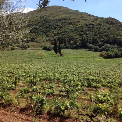 Countryside, Greece.