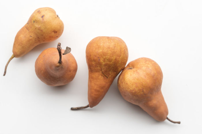 Beurré Bosc pears Close-up Cut Out Food Food And Drink Freshness Fruit Group Of Objects Healthy Eating Indoors  No People Orange Color Pear Pears Plant Stem Raw Food Still Life Studio Shot Wellbeing White Background