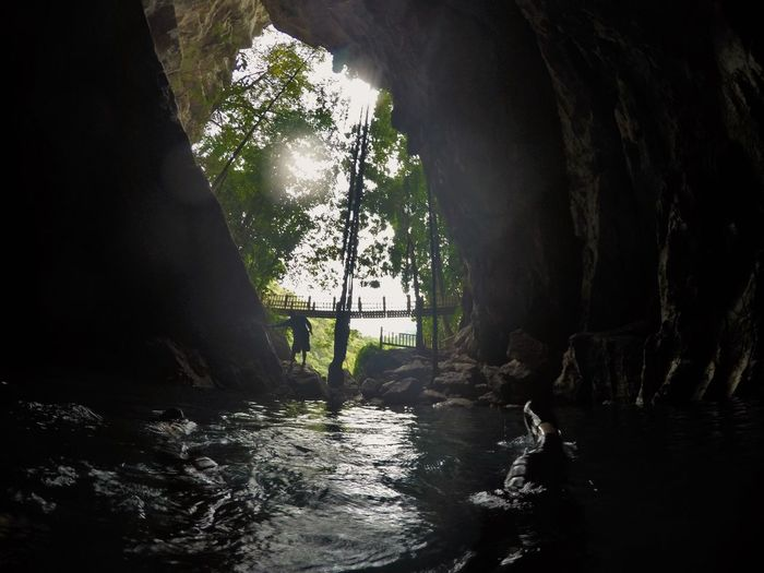 cenote Mexico Travel Beauty In Nature Bridge Cave Cenote Day Lian Liana Nature Outdoors Rock - Object Scenics Tranquil Scene Tranquility Travel Destinations Tree Water