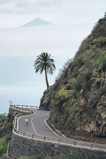 Palm trees on road by sea against sky