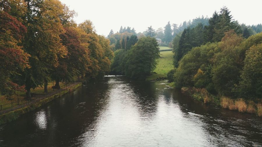 ... River Hafren in Llanidloes ... Water Nature Reflection Outdoors Rio Trees Wales Severn River Severn Sabrina Town Mid Wales река осень Otoño Autumn Fall Fog Foggy туман