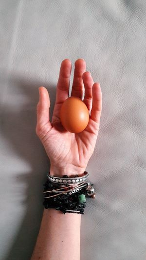 Close-up of hand holding eggs