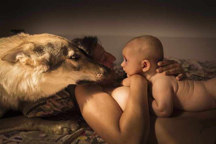Shirtless Mother Embracing While Dog Lying On Bed At Home