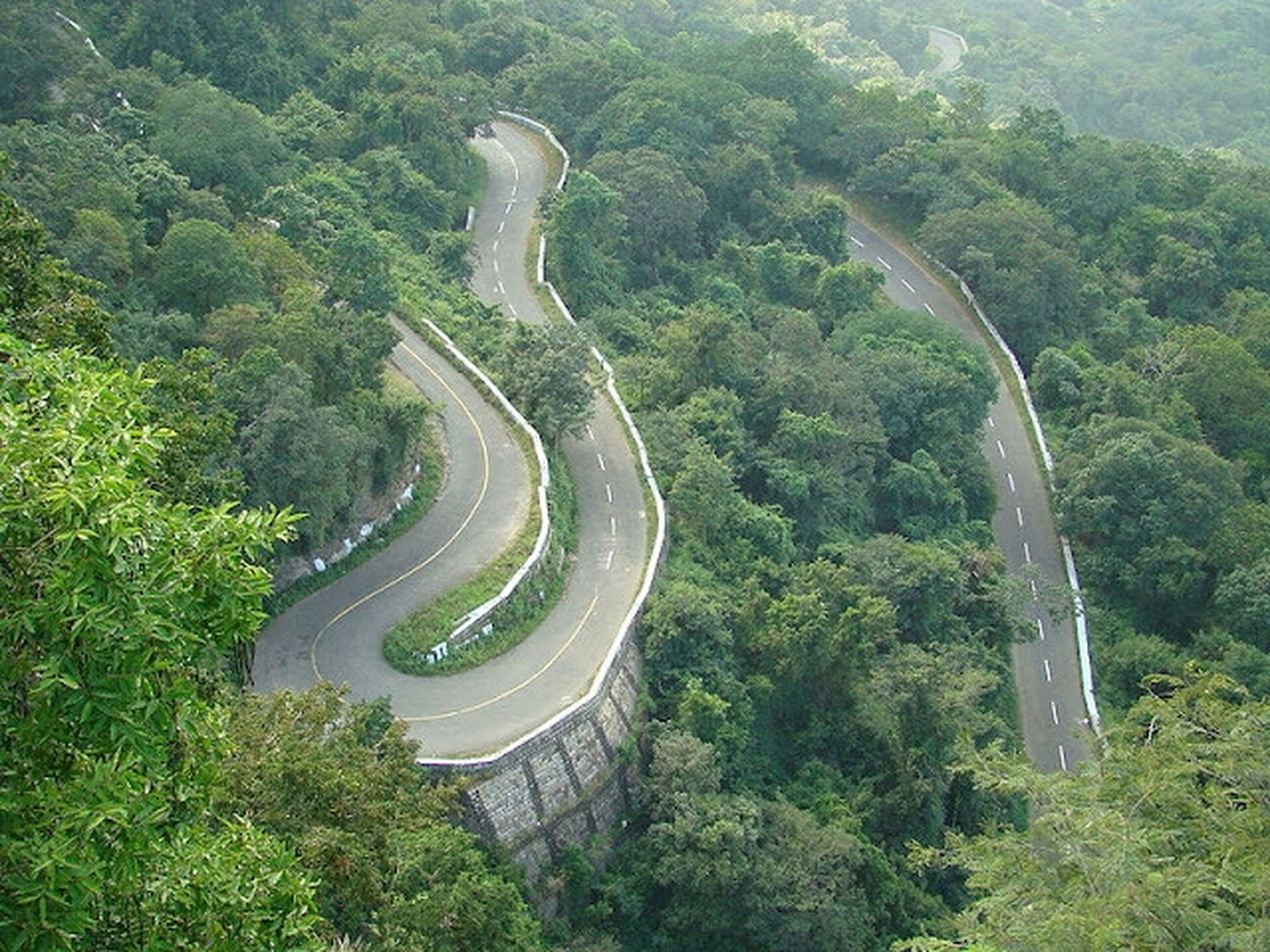 tree, transportation, high angle view, green color, built structure, architecture, growth, road, lush foliage, connection, day, travel, travel destinations, nature, forest, outdoors, curve, no people, bridge - man made structure, tourism