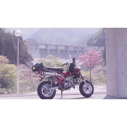 蔵王ダム(滋賀県)Honda Dax