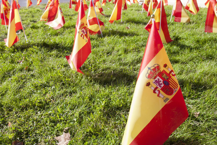 Close-up of various flags hanging on field