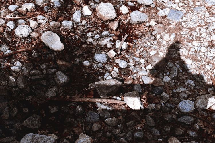 High angle view of stones on rock