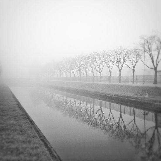 è così triste l'odore di nebbia Beautifully Organized Blackandwhite Reflection Foggy Day Walking Alone... Showcase: February