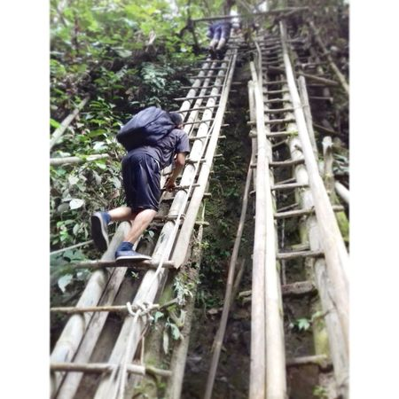 step by step to up level Working Men One Person Full Length Climbing Real People Outdoors One Man Only Adult RISK People Day Forest Tree Nature