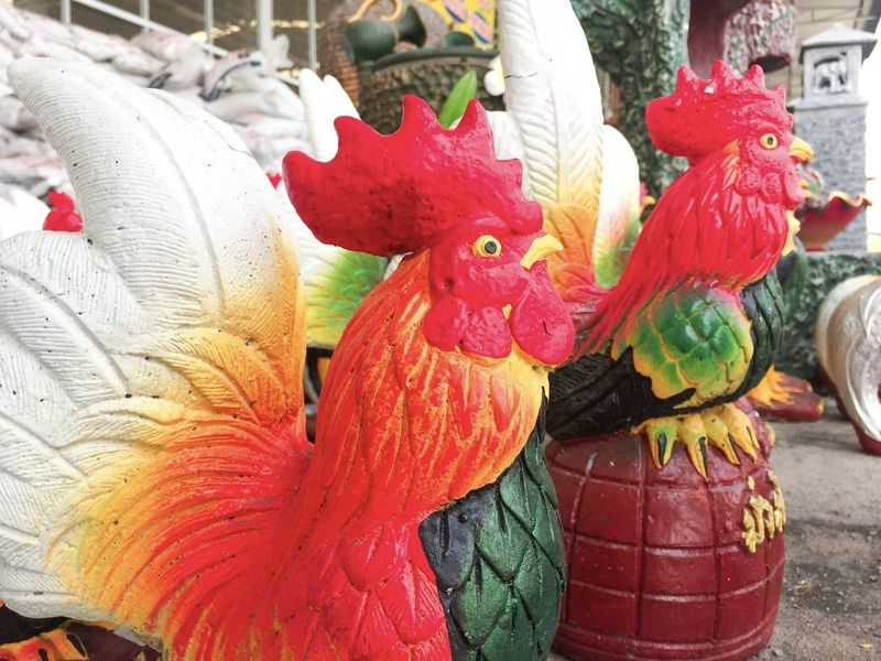Beautiful clay chicken Chickens Cockscomb Flower Head Red Animal Representation Art And Craft Beautiful Clay Chicken Bird Chinese Dragon Chinese New Year Clay Close-up Colorful Chicken Day Decoration Dragon Earthware Multi Colored No People Outdoors Red Chicken Ware
