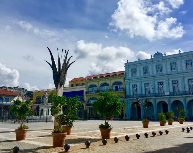 Cuban city square Palm Tree City Square Cuba Cuba Collection Cuban Life Sky Cloud - Sky Built Structure Architecture Plant Tree Building Exterior Nature Day City Building Tropical Climate Outdoors