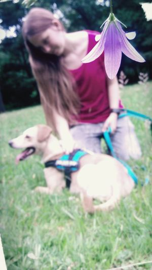 Girl Dog Outdoors One Woman Only Happiness Pets One Animal Young Adult Grass Day Domestic Animals People Adult First Eyeem Photo