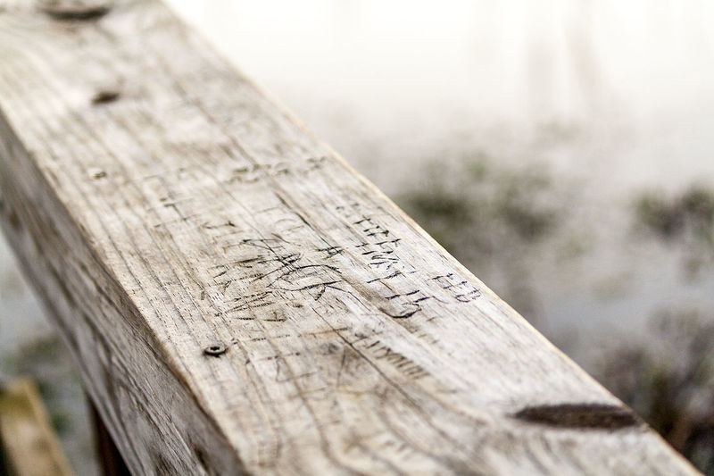 Boardwalk Carved In Wood Carved Names Carved Wood Close-up Etched Etched Wood Handrail  Knotted Wood Names No People Rough Swamp Textured  Wood - Material Wood Grain Wooden Board