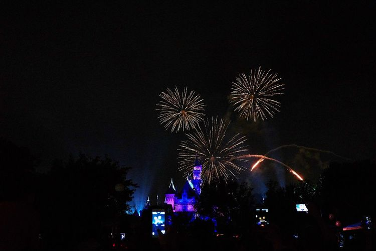 Night Arts Culture And Entertainment Firework Display Firework - Man Made Object Firework Crowd Mickey Mouse Disneyland A6000 Sigma19mmArt
