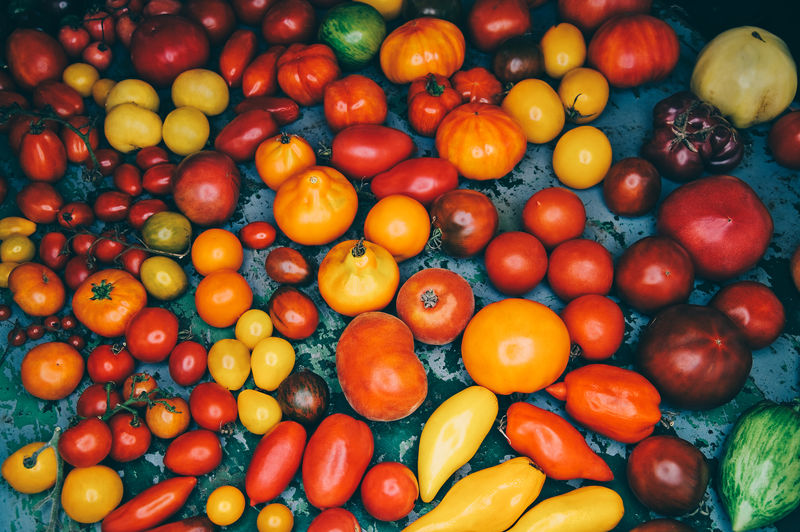 different old sorts of tomatoes Food And Drink Food Healthy Eating Freshness Vegetable Large Group Of Objects Wellbeing Fruit Red Abundance Choice Still Life Tomato No People Market For Sale Variation High Angle View Full Frame Orange Different Type Sort