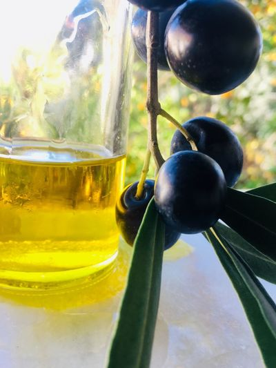 Olives fruit and olive Oil Olives Olive Oil Macro Food And Drink Close-up No People Food Freshness Glass - Material Focus On Foreground Healthy Eating Fruit Nature Table Container Transparent