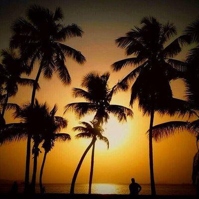 Una puesta de sol en las playas de Puerto La Cruz en Anzoátegui en Venezuela Venezuelatravel Venezuelaes Gotravelfree Gf_venezuela Gf_colombia IG_GRANCARACAS IgersVenezuela Insta_ve Instapro_ve IG_Venezuela InstaLoveVenezuela Instafoto_ve Instaland_ve Destinomaschevere Tequierovenezuela Thisisvenezuela Icu_venezuela Ig_lara Igworldclub Ig_tachira IG_Panama Ig_merida Instavenezuela elnacionalweb venezuelapaisajes instanature gf_daily venezuelacaptures