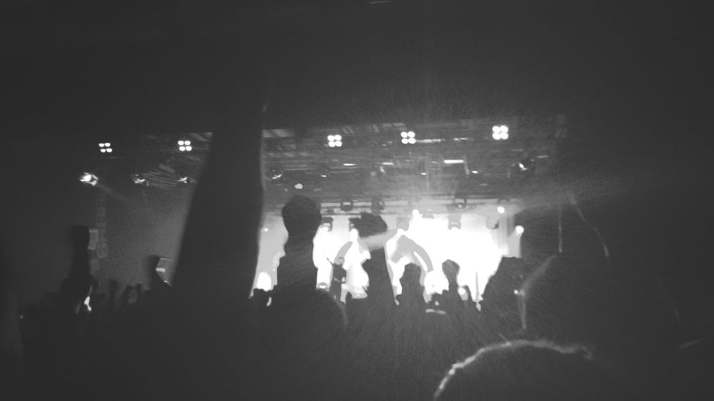 Last nights concert Rise Against Live Music