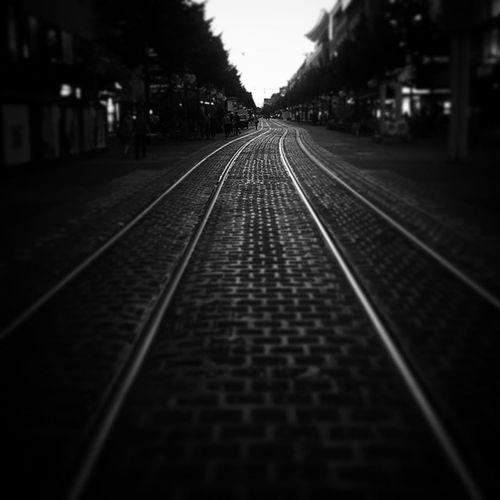 At Mannheim Radev_photography