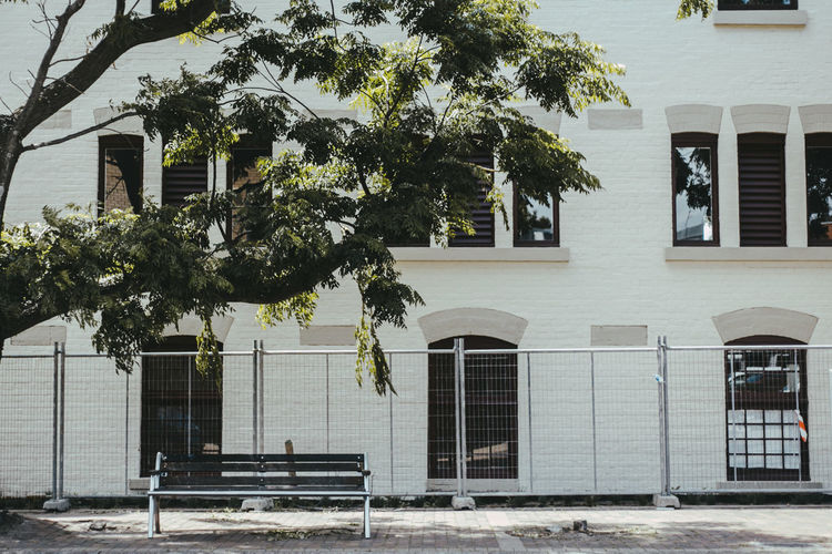 australia Architecture Branch Building Exterior Built Structure City Day Growth House No People Outdoors Residential Building Tree White Background White Color Window EyeEmNewHere EyeEmNewHere The Architect - 2017 EyeEm Awards