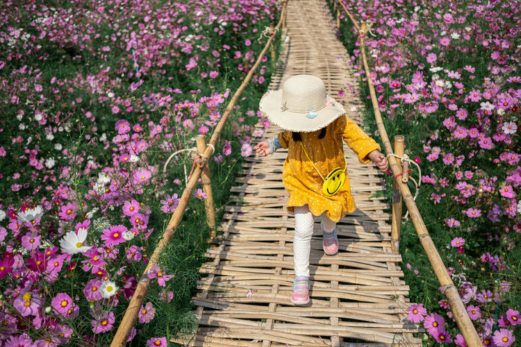 High angle view of woman walking by flowering plants