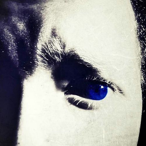EyeEm Best Shots EyeEmBestEdits Check This Out Taking Photos Eye4photography  Black And White With A Splash Of Colour Creative My Eye Blue Eyes