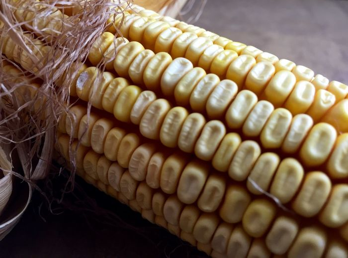 Field Corn Abundance Close-up Complexity Corn Corn On The Cob Extreme Close-up Food Food And Drink Freshness Full Frame Heap In A Row Intricacy Large Group Of Objects Organic Repetition Retail  Selective Focus Still Life Yellow
