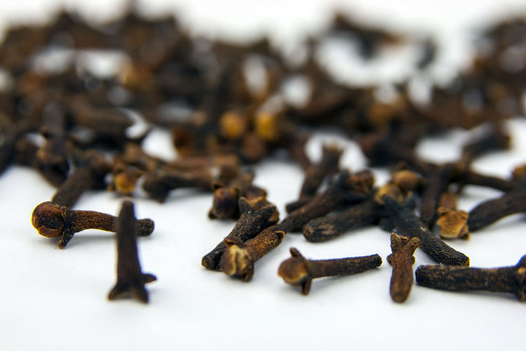 Close-up of cloves on white background