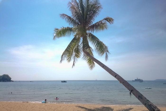 Beach Beauty In Nature Horizon Over Water Malaysia Meer Nature Palm Tree Palme Scenics Sea Sky Strawberry Tioman Tioman Island Tranquil Scene Tranquility Water