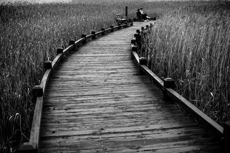 Empty boardwalk on field