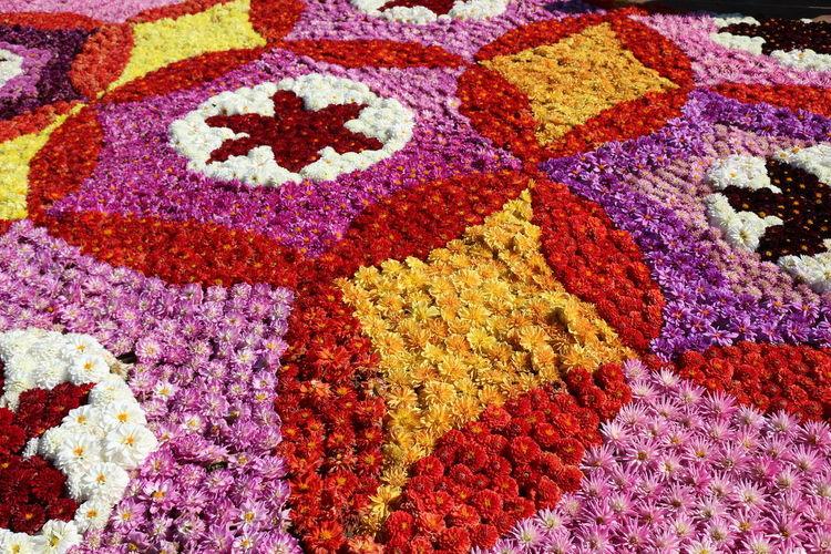 ペルシャ絨毯ぢゃあないよ(>_<)。ダリア8000輪で創られた、ダリアの絨毯。『万華鏡』。 EyeEm Nature Lover EyeEm Best Shots ダリア ダリアの絨毯 万華鏡