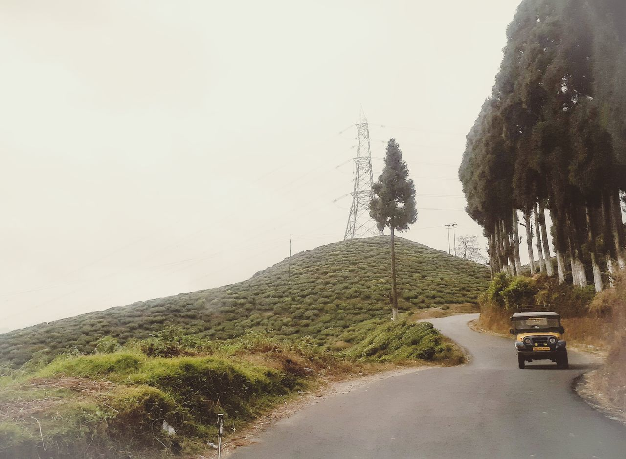 ROAD AMIDST PLANTS AGAINST SKY