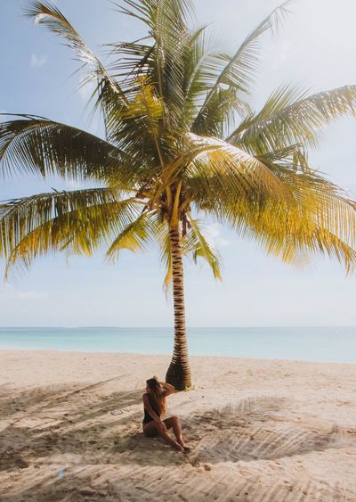 Young Woman Sitting By Palm Tree On Sandy Beach