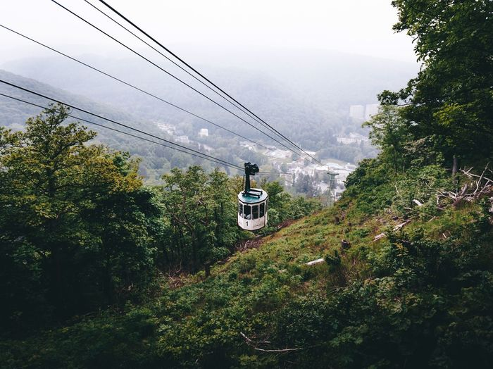 Overhead cable car over trees against sky