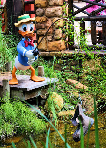 You can find Donald and friends at Disney's Animal Kingdom Bad Luck Bright Colors DisneyWorld Donald Duck Animal Kingdom Boot Close-up Day Family Fun Fishing Growth Life Size  Male Likeness No People Outdoors Plant Sculpture Statue