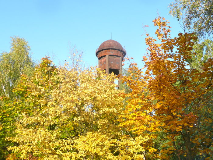 Architecture Autumn Leaves Autumn Scene Autumn Trees Built Structure Dome Locomotive Watering Tower Metal Costruction Nature No People Outdoors Rust Rusty Tower Sky Tree