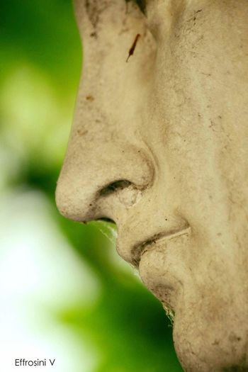Statue Close-up Face Old Details Beautiful ArtWork Sculpture Nature Streetphotography Conservatory Canon700dphotography Thessaloniki Greece