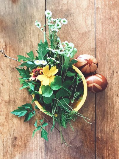 spring array EyeEmNewHere Clover Country Slavic Egg Wildflower Floral Spring Easter Eggs Easter Flower Wood - Material Leaf No People Table Plant Green Color Freshness Nature Growth Fragility Bouquet Close-up Flower Head EyeEmNewHere