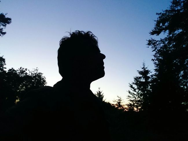 Silhouette Night Abendstimmung Beauty In Nature Schattenspiel  Kopf HJB One Head Shadow Human Head Forest Darkness And Light Silence Silouette & Sky