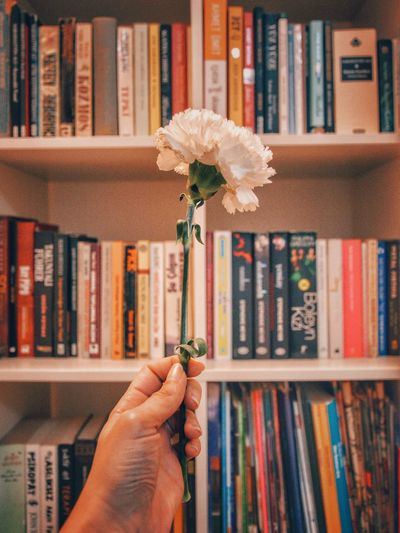 Cropped hand holding flower against books on shelf