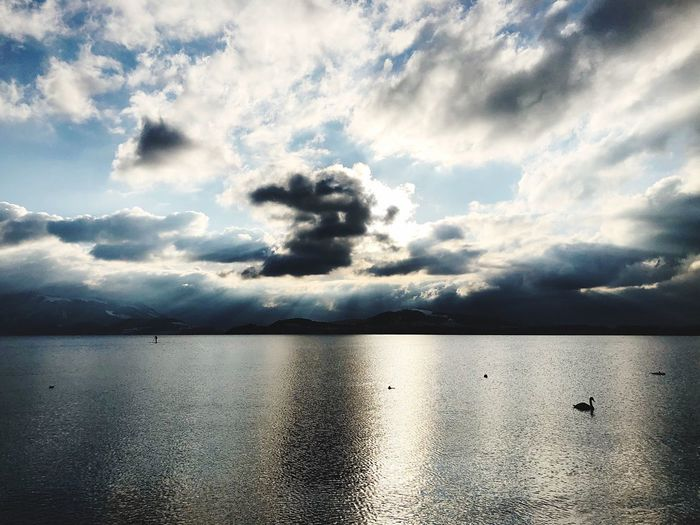 Water Sky Sea Scenics Tranquil Scene Tranquility Nature Beauty In Nature Cloud - Sky No People Outdoors Day Waterfront Idyllic Reflection Horizon Over Water Nautical Vessel Swan Switzerland Landscape Clouds