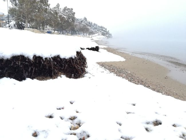 Nature Outdoors Winter Snow Sea Sky Beauty In Nature Blue White