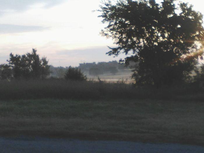 Fall Beauty Foggy Morning Sun Coming Up Eyem Market Eyem Collection Eyemphotography