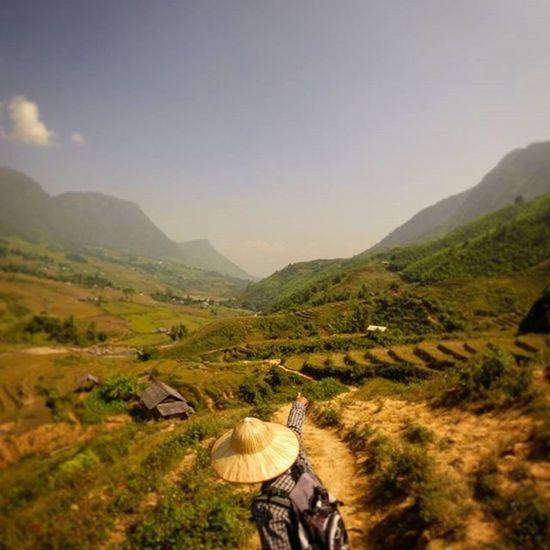 Vietnam Sapa RiceTerraces Thatstheway